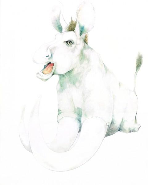 donkey - Doug Crocco